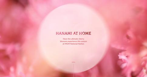 MGM-Hanami at Home