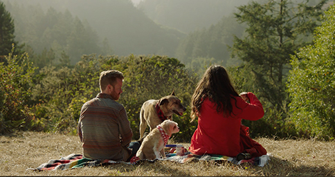 Purina-Chasing the Promise of Zero-Waste Living